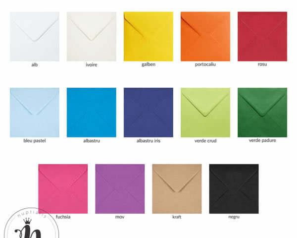 plicuri-colorate-13×13-mate