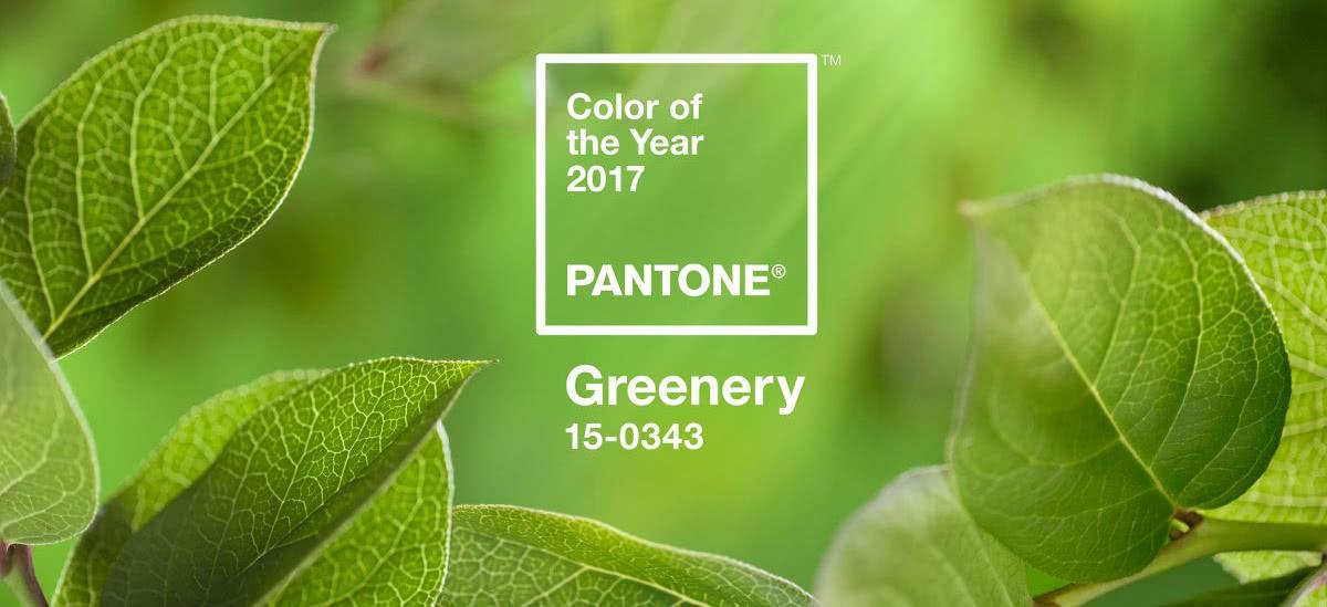 Inspiratie pentru o nunta in culoarea anului 2017 greenery for Pantone 2017 greenery