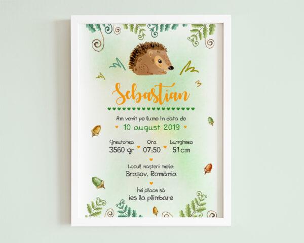 Tablou personalizat bebe Tiny Hedgehog, cu arici si informatii despre nou nascut.